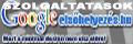 Professzionális keresőoptimalizálás, a google első helyért! Kereső optimalizálás szolgáltatások!